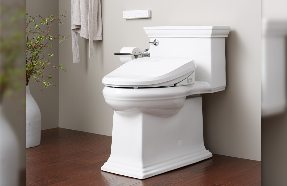 Bidet toilet seat in the home